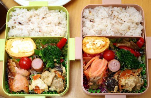 炒り豆腐弁当